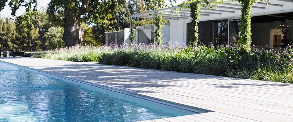 słoneczny ogród